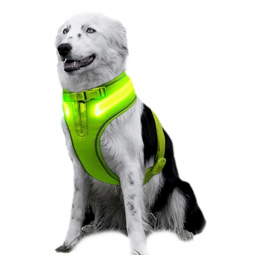 Green A Line Dog Harness Small Size USB Rechargeable LED Dog Harnesses Light Up Harness Anti Pull Safety Harness Light Up Dog Flashing Harness