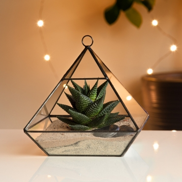 Ultra Pyramid Shaped Glass Terrarium Planter For Air Plants Cactus Small Succulents Or Wedding Table Centrepiece or Gift for a Modern Home Geometric