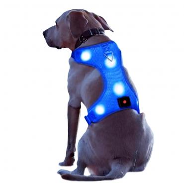 Ultra Rechargeable LED Dog Harness Flashing Light Up Glow Night Safety Vest Coat-Large-blue