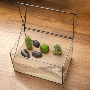 Box House Shaped Glass Terrarium Planter For Air Plants Cactus Small Succulents & Wedding Table Centrepiece or Gift Geometric & Swing Lid 22.15.3x19cm