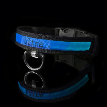 Blue Nylon LED Dog Collar Light Up Flashing Glowing Pet Night Safety Adjustable Replaceable Batteries Bright