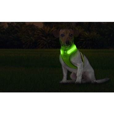 Small Green A Line Green Dog Harness USB Rechargeable LED Dog Harnesses Light Up Harness Anti Pull Safety Harness Light Up Dog Harness Bright Flashing Harness Hi Vis Dog Vest Illuminated Dog Jacket
