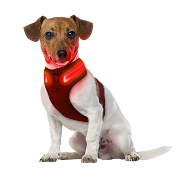 Small A Line Red Dog Harness USB Rechargeable LED Dog Harnesses Light Up Harness Anti Pull Safety Harness Light Up Dog Harness Bright Flashing Harness Hi Vis Dog Vest Illuminated Dog Jacket