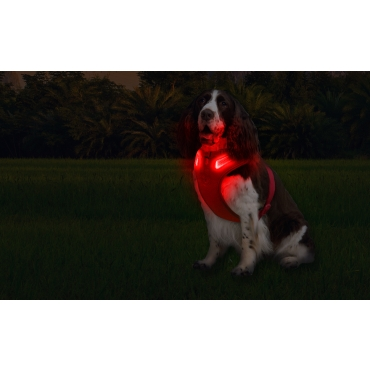 Medium A Line Red Dog Harness USB Rechargeable LED Dog Harnesses Light Up Harness Anti Pull Safety Harness Light Up Dog Harness Bright Flashing Harness Hi Vis Dog Vest Illuminated Dog Jacket