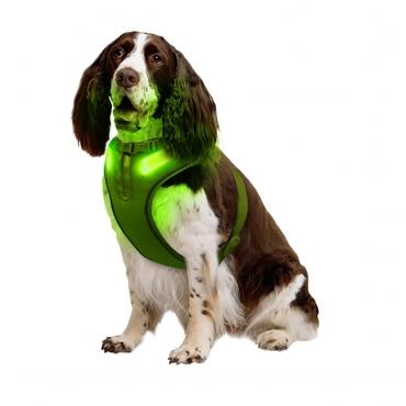 Medium A Line Green Dog Harness USB Rechargeable LED Dog Harnesses Light Up Harness Anti Pull Safety Harness Light Up Dog Harness Bright Flashing Harness Hi Vis Dog Vest Illuminated Dog Jacket