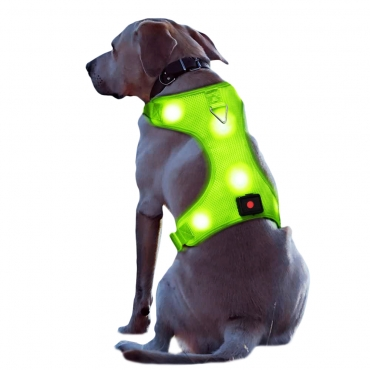Ultra Rechargeable LED Dog Harness Flashing Light Up Glow Night Safety Vest Coat-Large-green