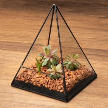 Ultra Triangle Shaped Glass Terrarium Planter For Air Plants Cactus Small Succulents Or Wedding Table Centrepiece or Gift Geometric 14x14x19cm…