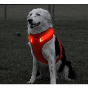 Large A Line Red Dog Harness USB Rechargeable LED Dog Harnesses Light Up Harness Anti Pull Safety Harness Light Up Dog Harness Bright Flashing Harness Hi Vis Dog Vest Illuminated Dog Jacket