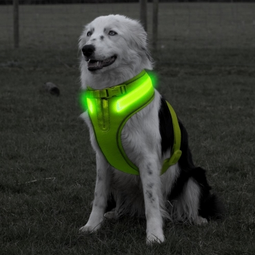 A Line Green Dog Harness Small Medium or Large Size USB Rechargeable LED Dog Harnesses Light Up Harness Anti Pull Safety Harness Light Up Dog Harness Bright Flashing Harness Hi Vis Dog Vest Illuminated Dog Jacket