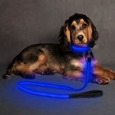Ultra USB Rechargeable LED Dog Lead Weatherproof Night Safety Flashing Light-blue
