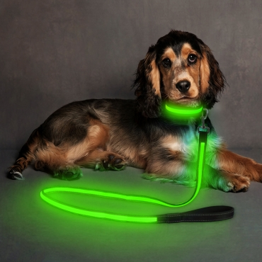 Ultra USB Rechargeable LED Dog Lead Weatherproof Night Safety Flashing Light-green