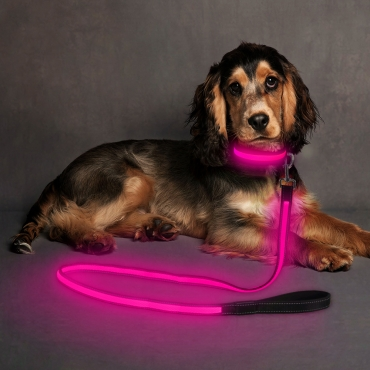 Ultra USB Rechargeable LED Dog Lead Weatherproof Night Safety Flashing Light-pink