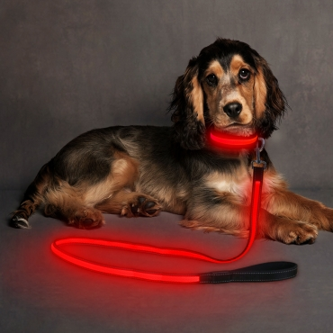 Ultra USB Rechargeable LED Dog Lead Weatherproof Night Safety Flashing Light-red